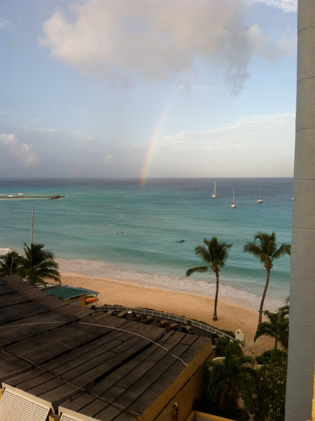 Double Rainbows and Horses in the Ocean...